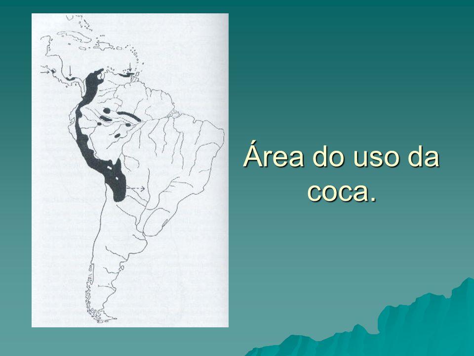Área do uso da coca.