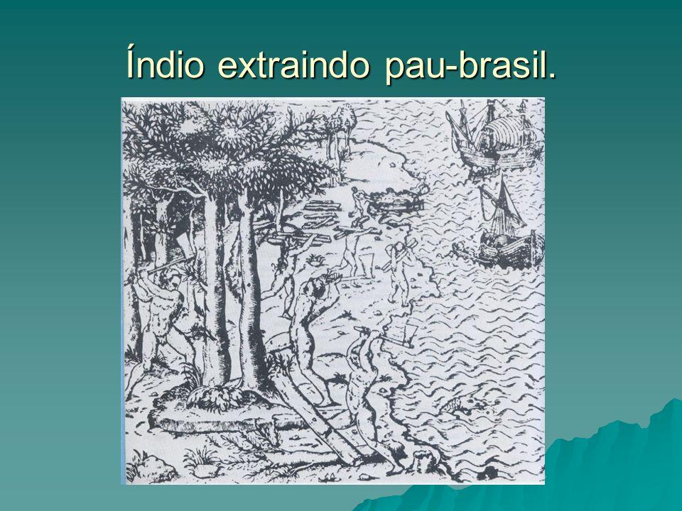 Índio extraindo pau-brasil.
