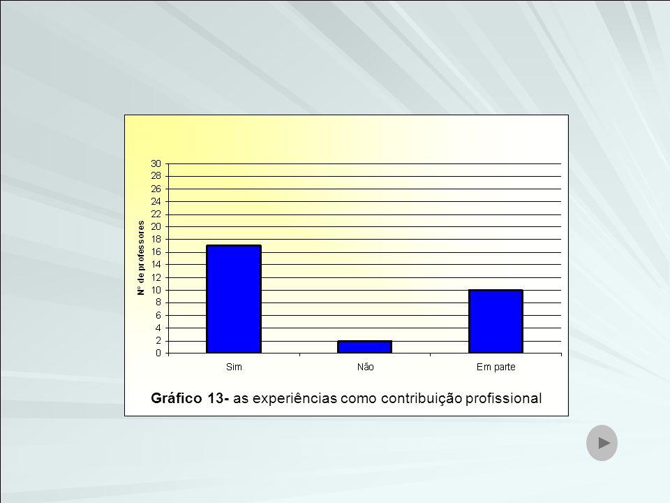 Gráfico 13- as experiências como contribuição profissional