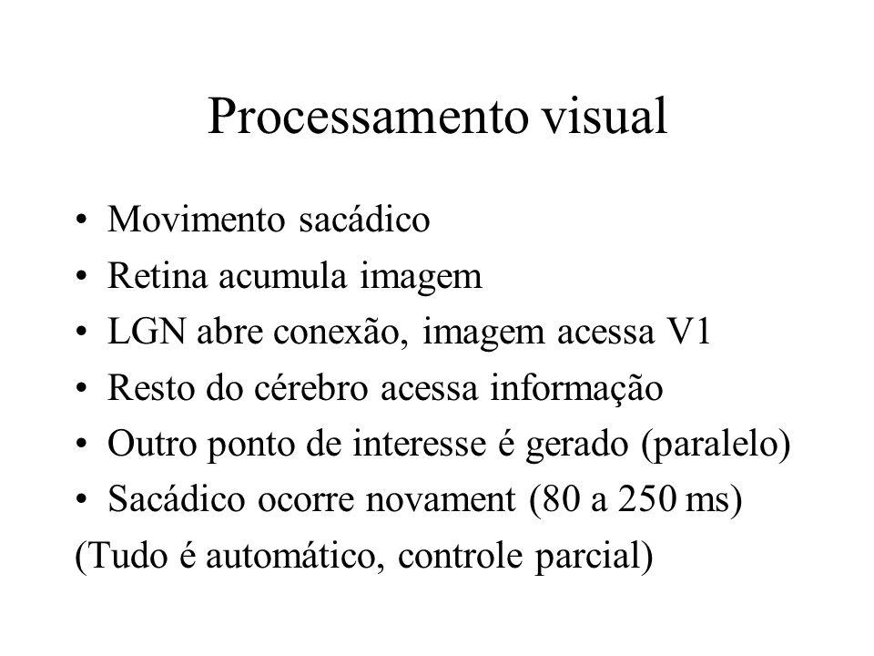 Processamento visual Movimento sacádico Retina acumula imagem