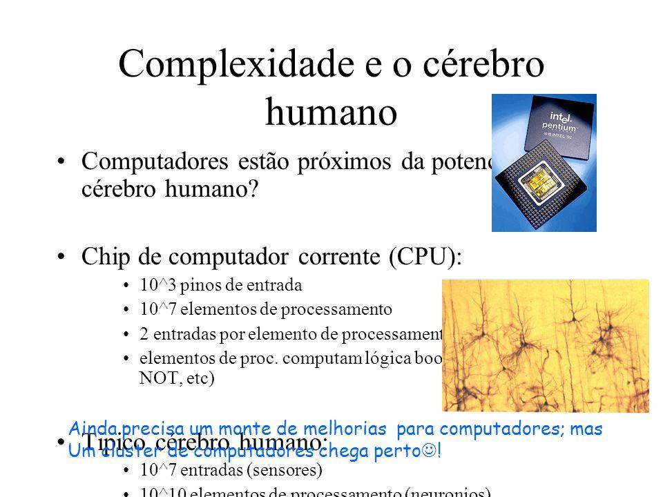 Complexidade e o cérebro humano
