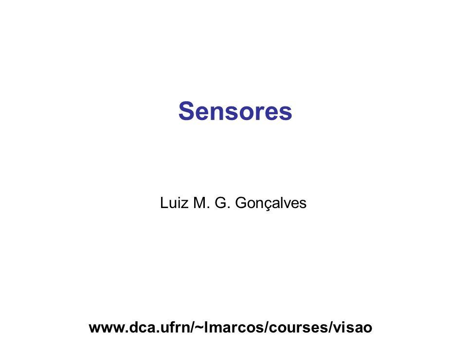 Sensores Luiz M. G. Gonçalves