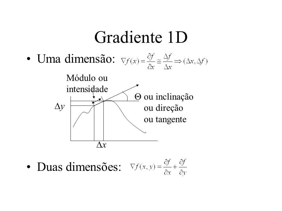 Gradiente 1D Uma dimensão: Duas dimensões: Módulo ou intensidade