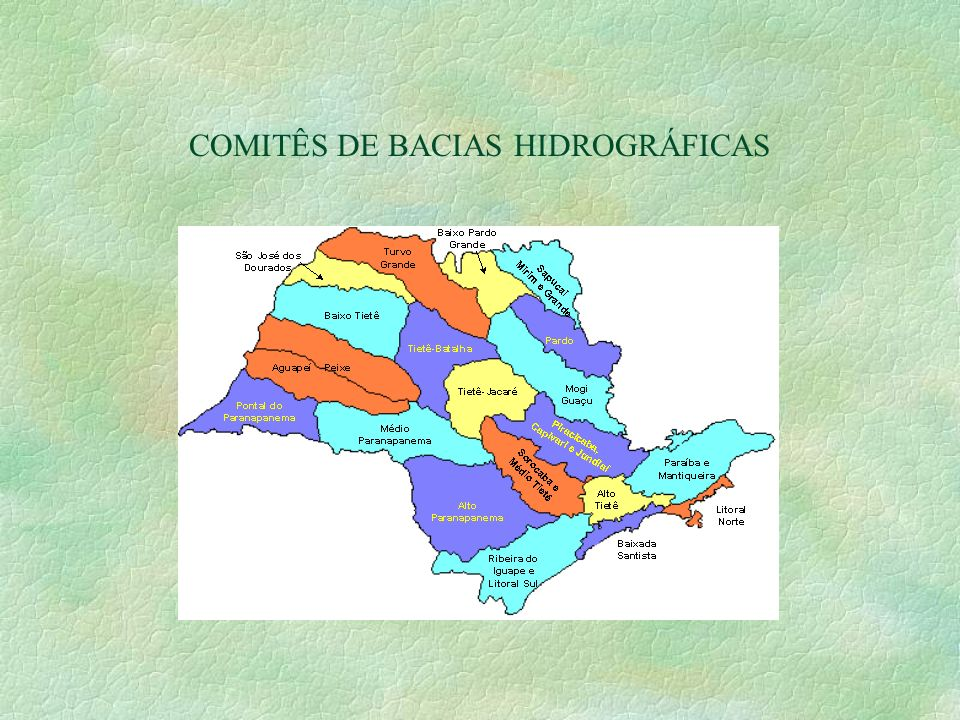 COMITÊS DE BACIAS HIDROGRÁFICAS