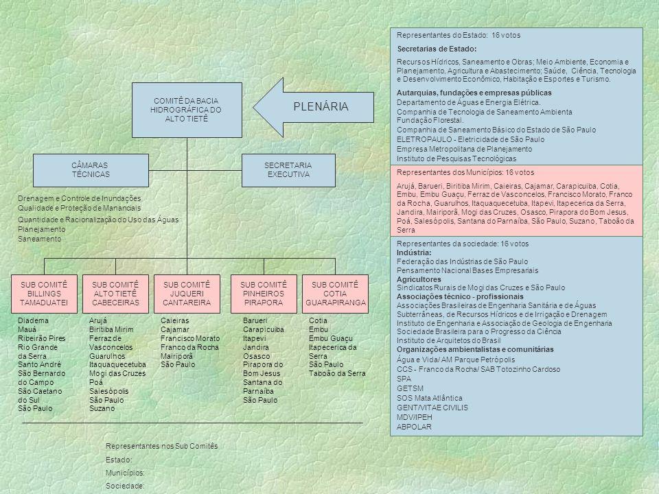 PLENÁRIA Representantes do Estado: 16 votos Secretarias de Estado:
