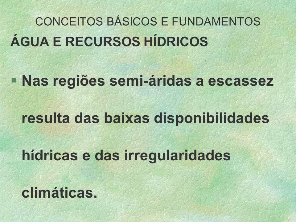 CONCEITOS BÁSICOS E FUNDAMENTOS