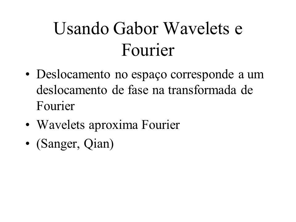 Usando Gabor Wavelets e Fourier
