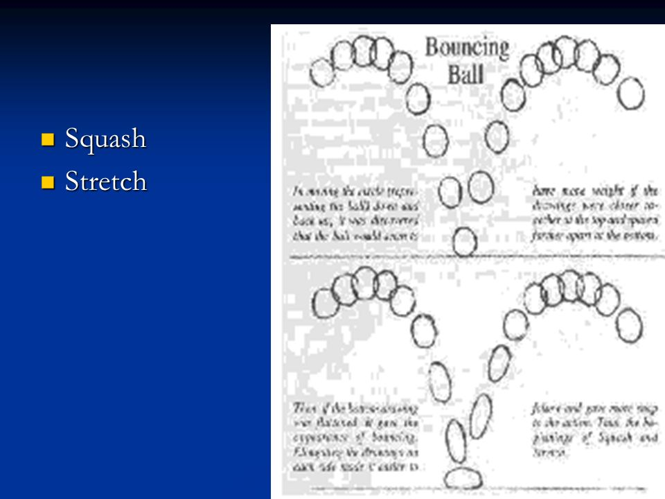 Squash Stretch