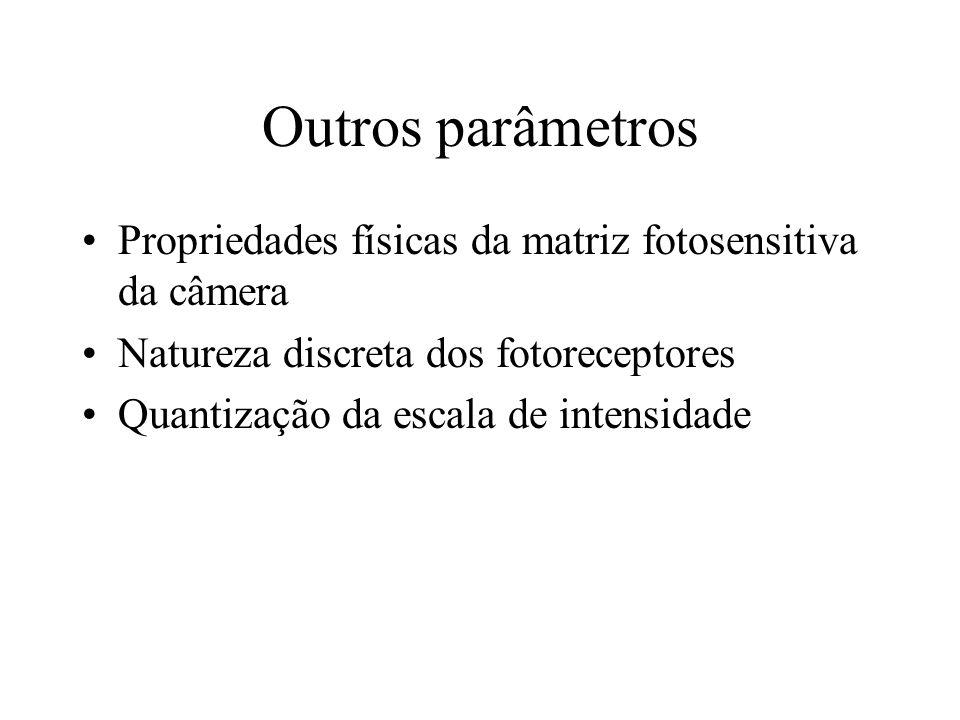 Outros parâmetros Propriedades físicas da matriz fotosensitiva da câmera. Natureza discreta dos fotoreceptores.