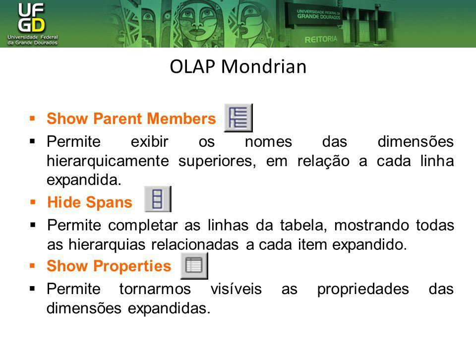 OLAP Mondrian Show Parent Members