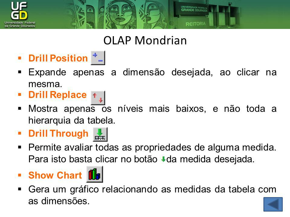 OLAP Mondrian Drill Position