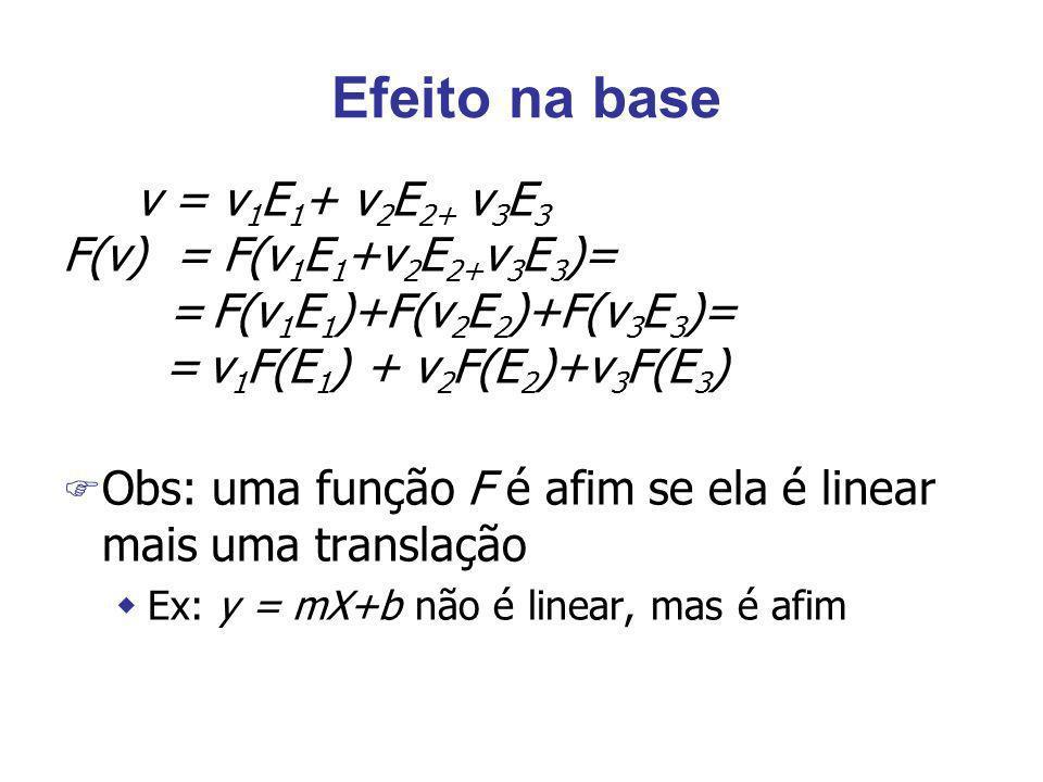 Efeito na base v = v1E1+ v2E2+ v3E3 F(v) = F(v1E1+v2E2+v3E3)=