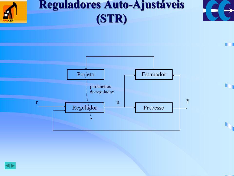 Reguladores Auto-Ajustáveis (STR)