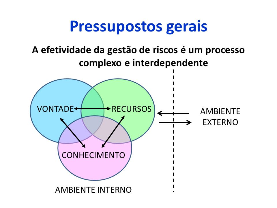 Pressupostos geraisA efetividade da gestão de riscos é um processo complexo e interdependente. VONTADE.