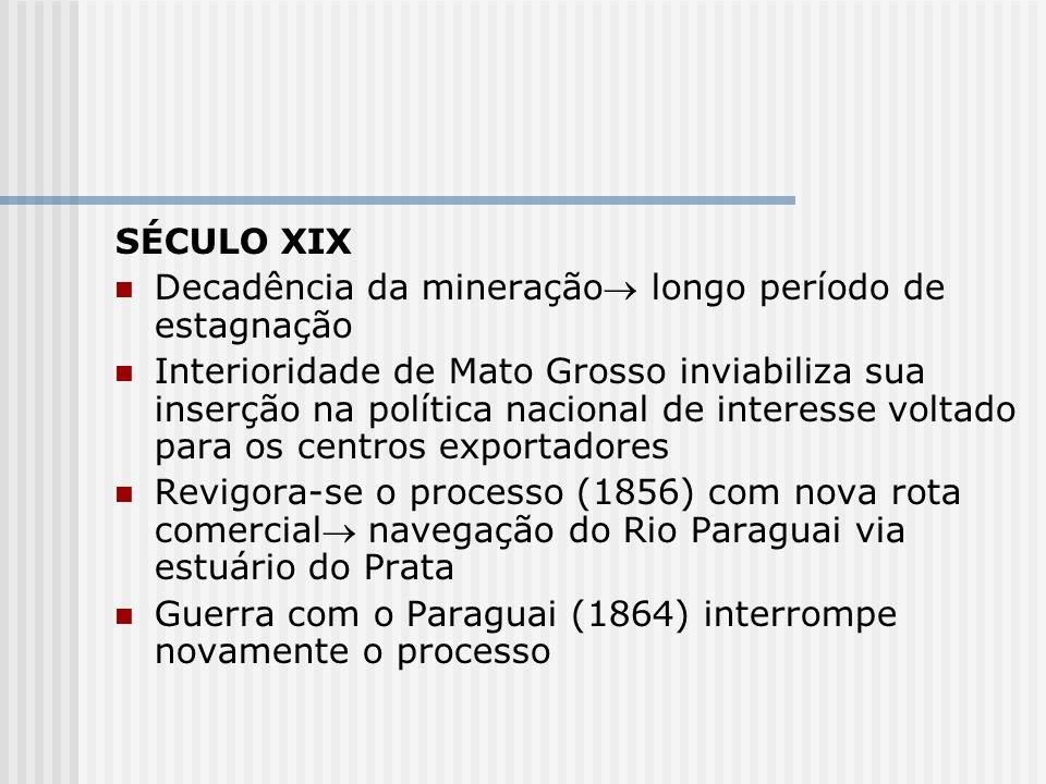 SÉCULO XIX Decadência da mineração longo período de estagnação.