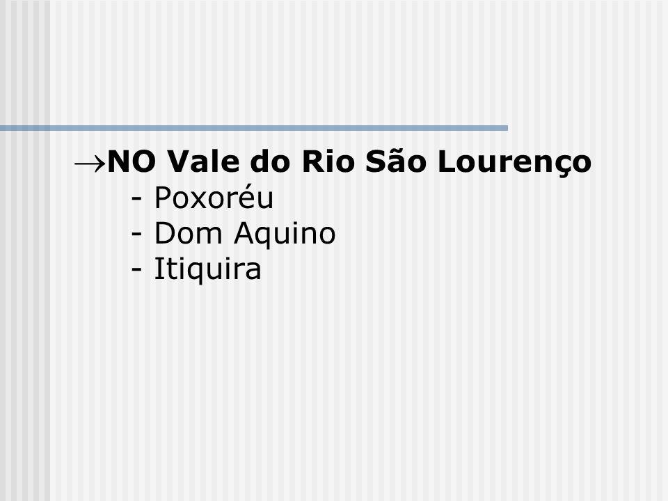NO Vale do Rio São Lourenço - Poxoréu - Dom Aquino - Itiquira