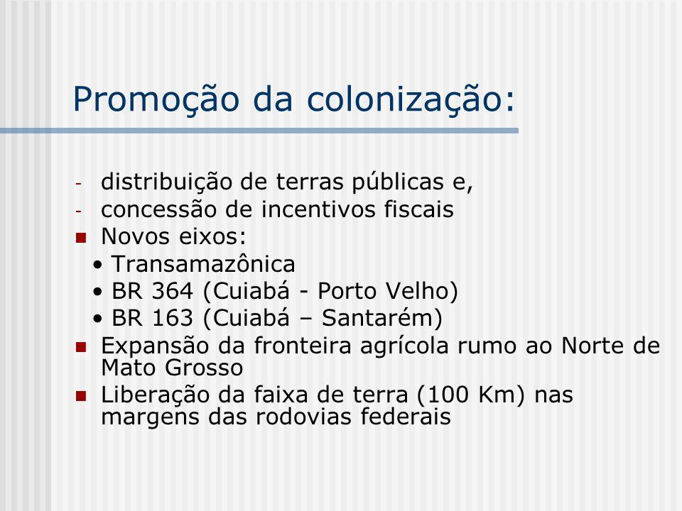 Promoção da colonização:
