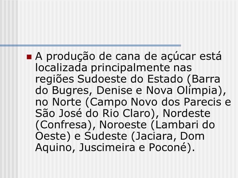 A produção de cana de açúcar está localizada principalmente nas regiões Sudoeste do Estado (Barra do Bugres, Denise e Nova Olímpia), no Norte (Campo Novo dos Parecis e São José do Rio Claro), Nordeste (Confresa), Noroeste (Lambari do Oeste) e Sudeste (Jaciara, Dom Aquino, Juscimeira e Poconé).