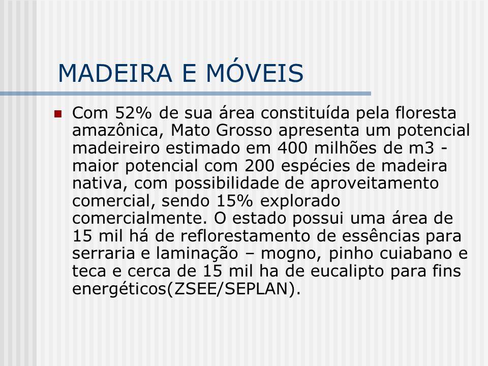 MADEIRA E MÓVEIS