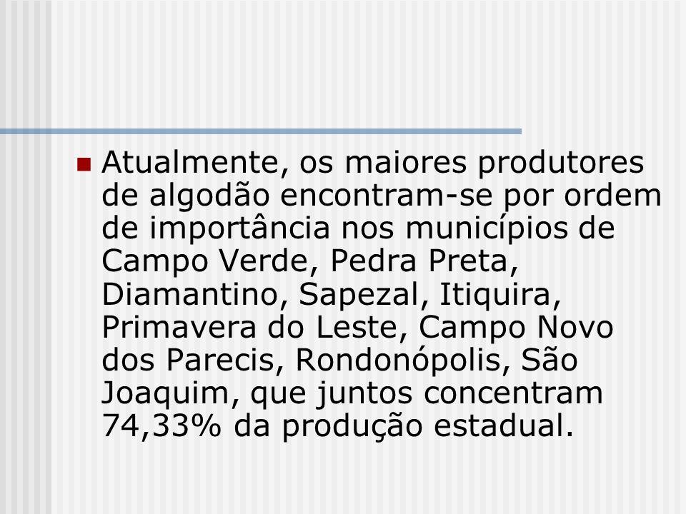 Atualmente, os maiores produtores de algodão encontram-se por ordem de importância nos municípios de Campo Verde, Pedra Preta, Diamantino, Sapezal, Itiquira, Primavera do Leste, Campo Novo dos Parecis, Rondonópolis, São Joaquim, que juntos concentram 74,33% da produção estadual.