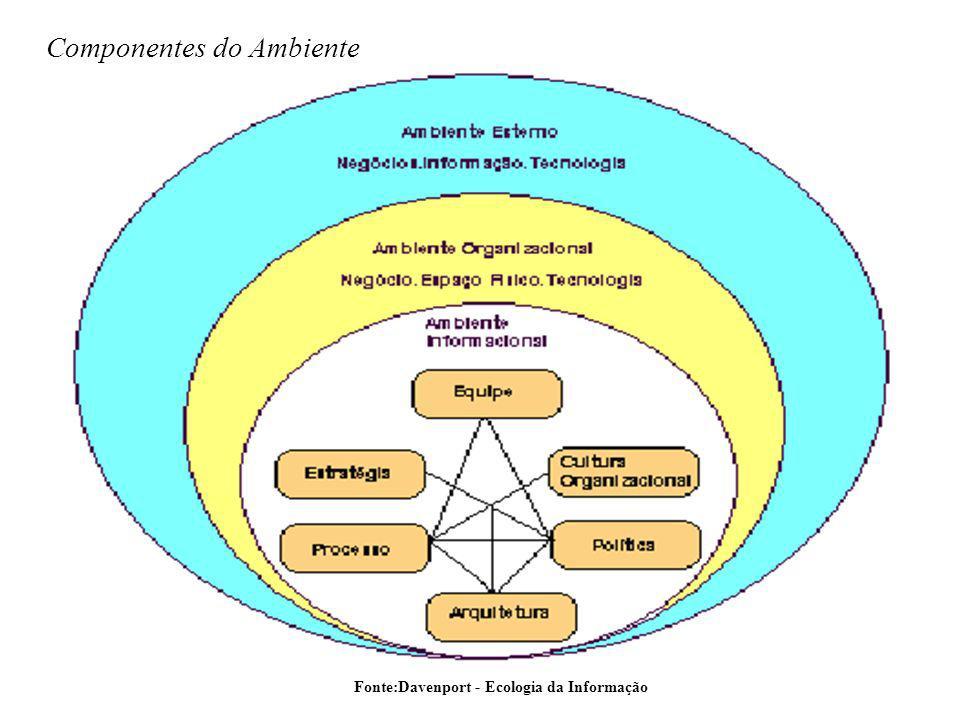 Componentes do Ambiente
