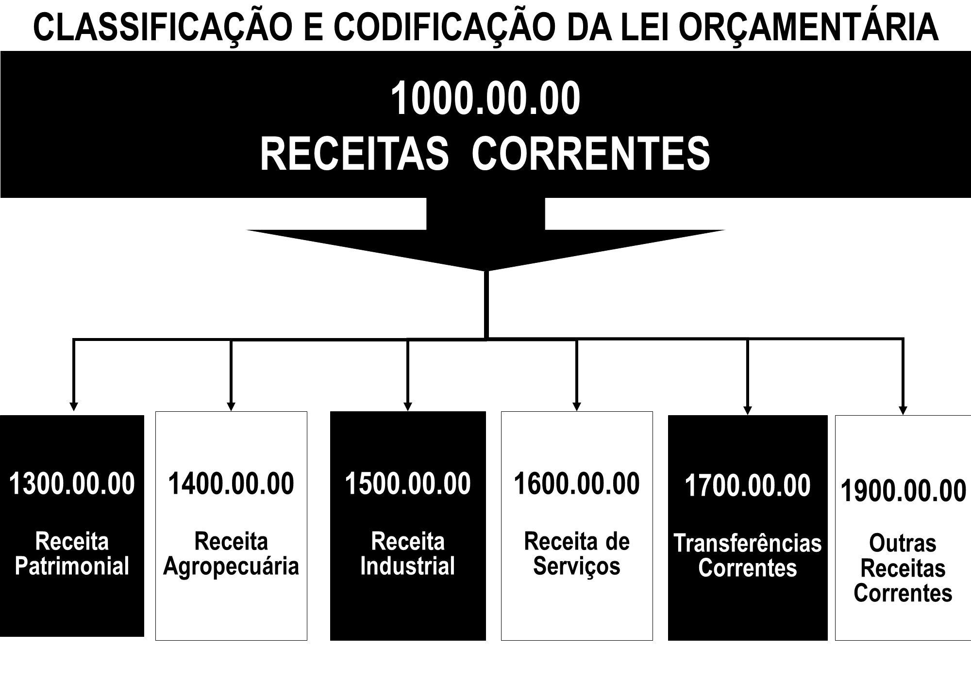 CLASSIFICAÇÃO E CODIFICAÇÃO DA LEI ORÇAMENTÁRIA