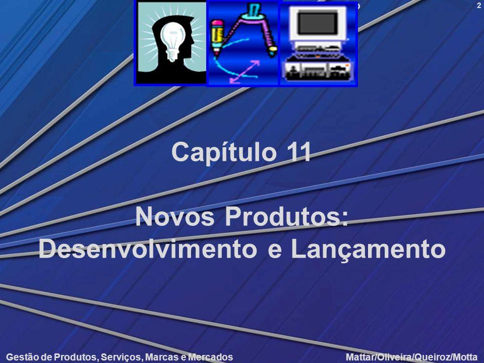 Novos Produtos: Desenvolvimento e Lançamento