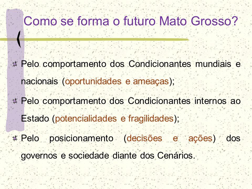 Como se forma o futuro Mato Grosso