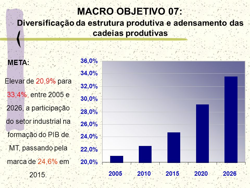 MACRO OBJETIVO 07: Diversificação da estrutura produtiva e adensamento das cadeias produtivas. 20,0%