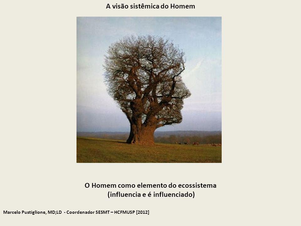 A visão sistêmica do Homem