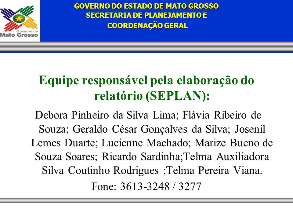 Equipe responsável pela elaboração do relatório (SEPLAN):