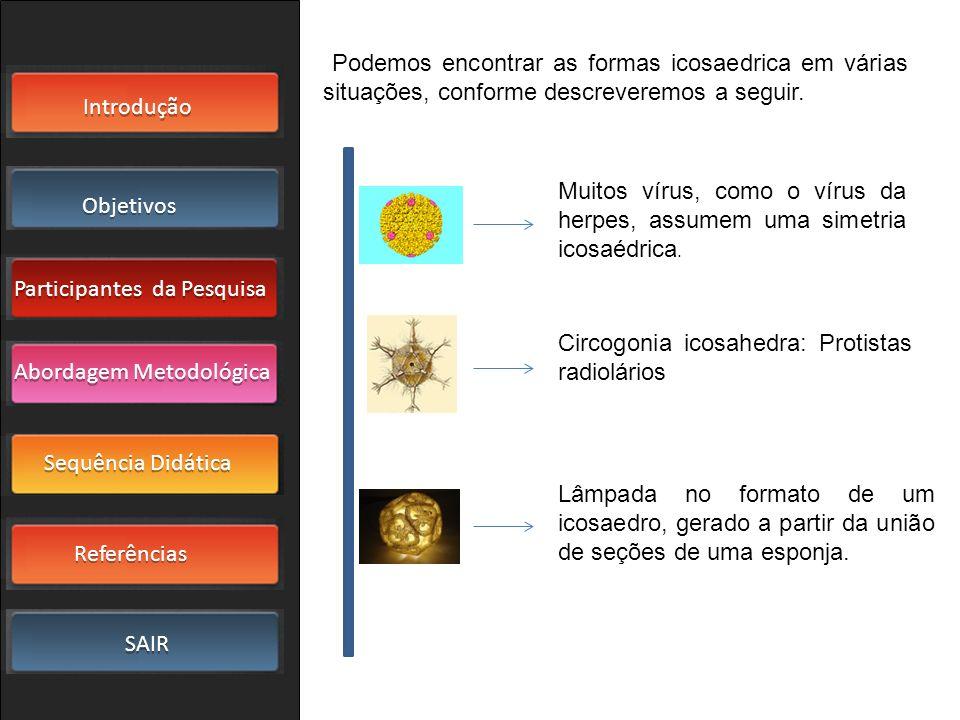 Podemos encontrar as formas icosaedrica em várias situações, conforme descreveremos a seguir.