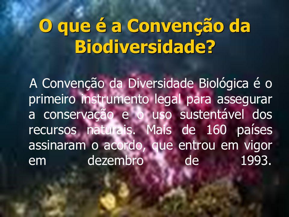 O que é a Convenção da Biodiversidade