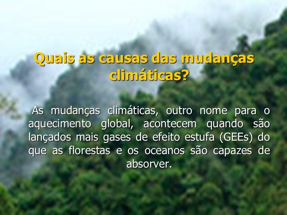Quais as causas das mudanças climáticas