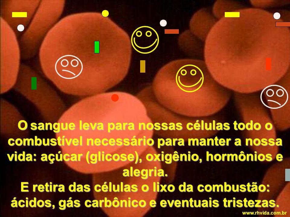 O sangue leva para nossas células todo o combustível necessário para manter a nossa vida: açúcar (glicose), oxigênio, hormônios e alegria.