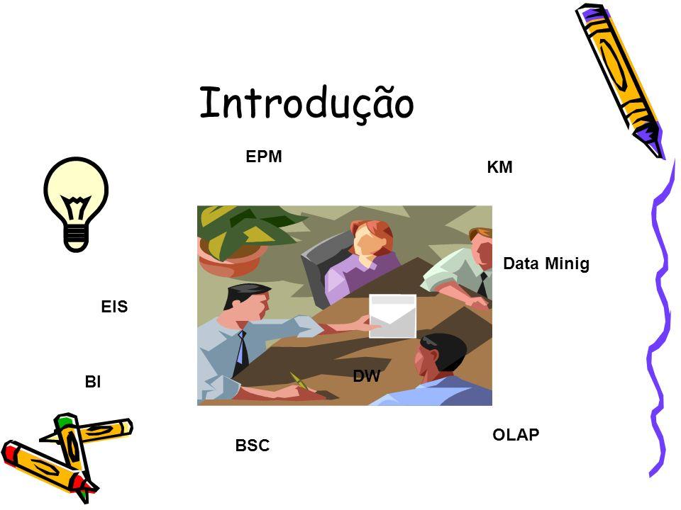 Introdução EPM KM Data Minig EIS DW BI OLAP BSC