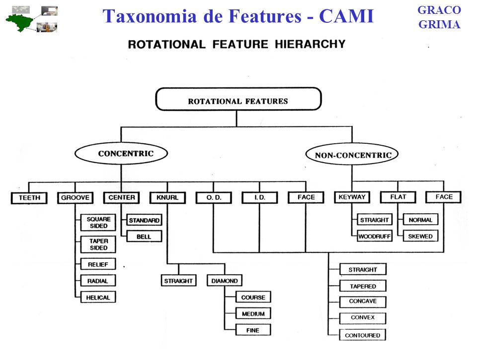 Taxonomia de Features - CAMI