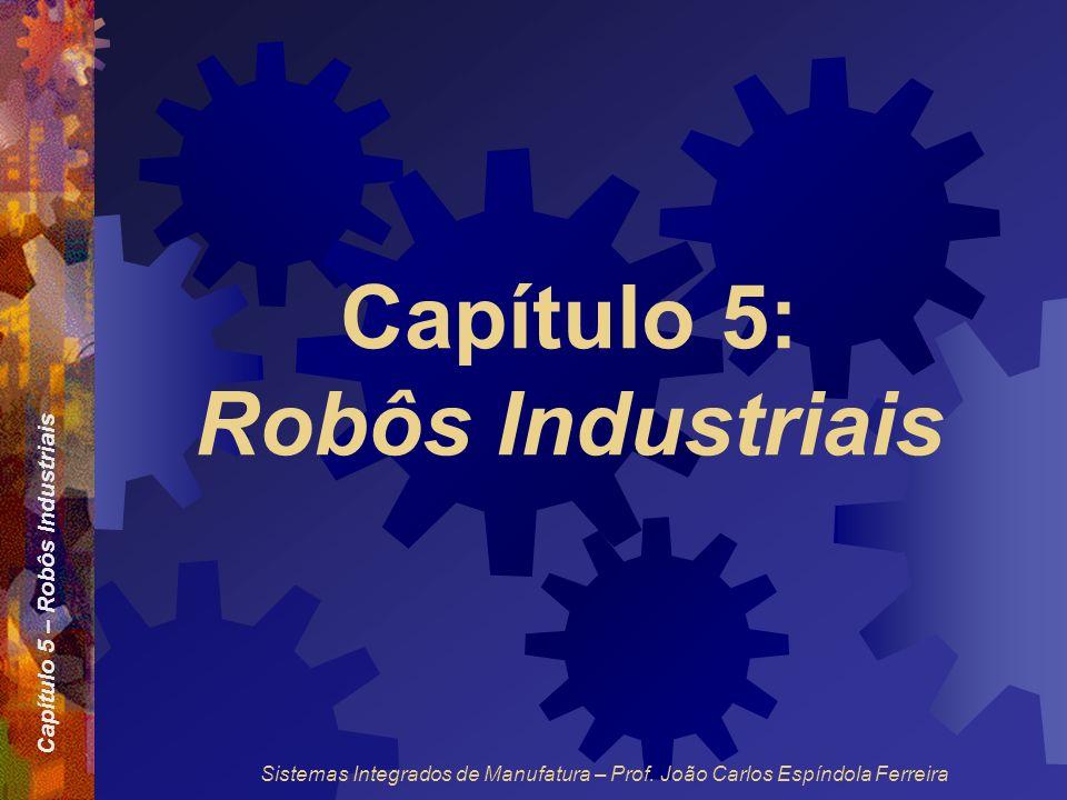 Capítulo 5: Robôs Industriais