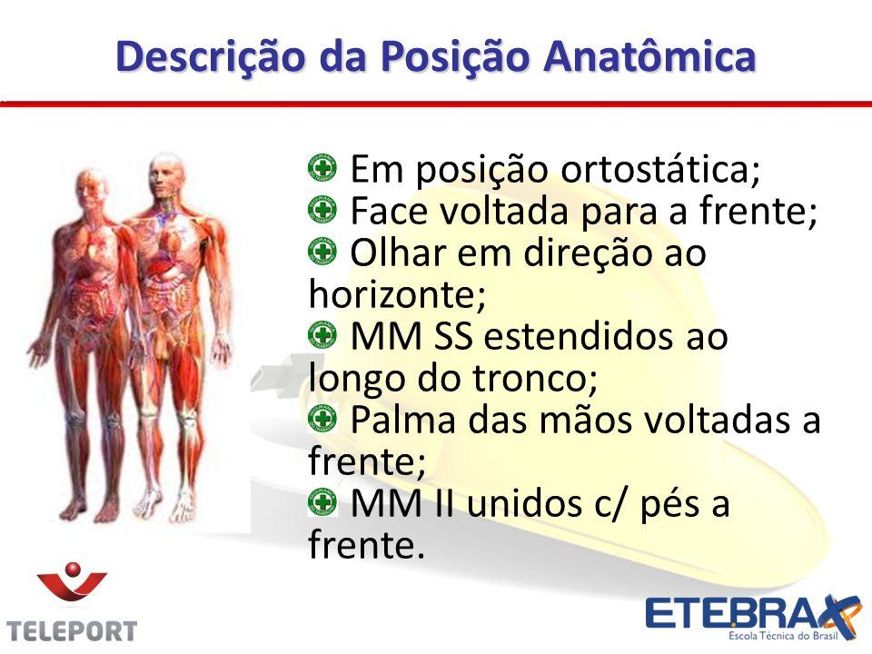 Descrição da Posição Anatômica
