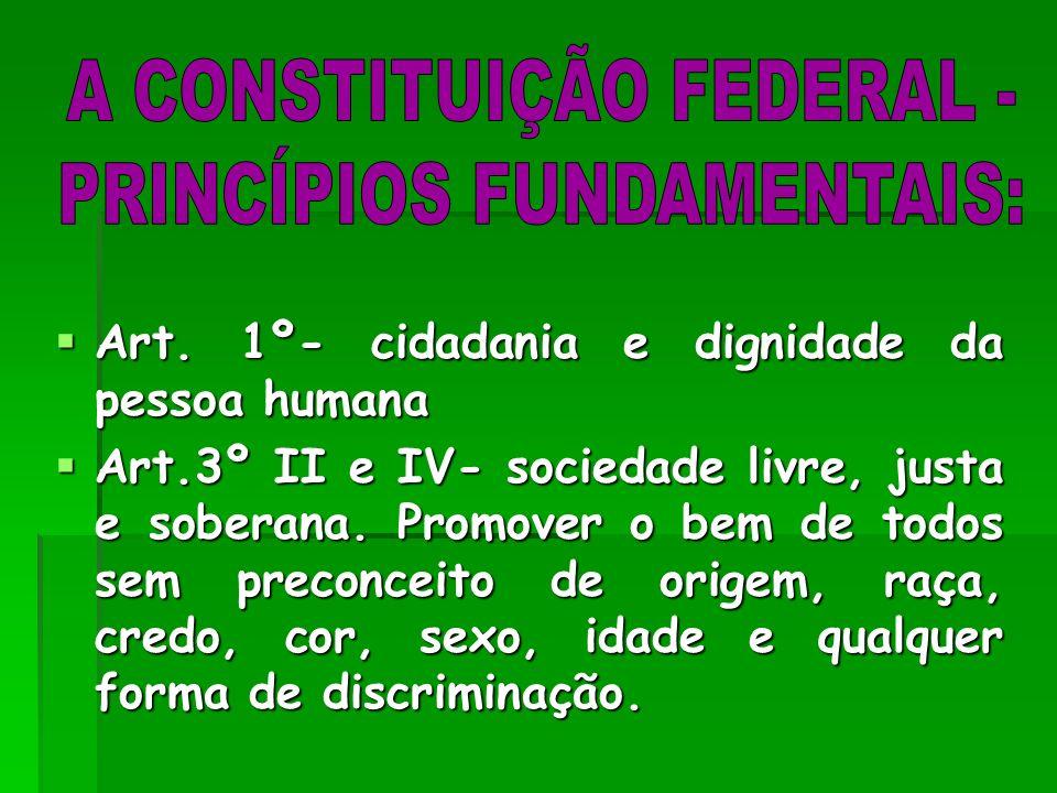 A CONSTITUIÇÃO FEDERAL - PRINCÍPIOS FUNDAMENTAIS:
