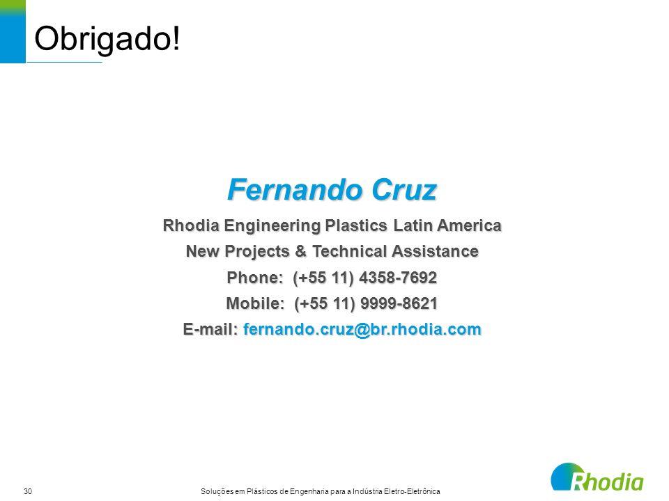 Obrigado! Fernando Cruz Rhodia Engineering Plastics Latin America