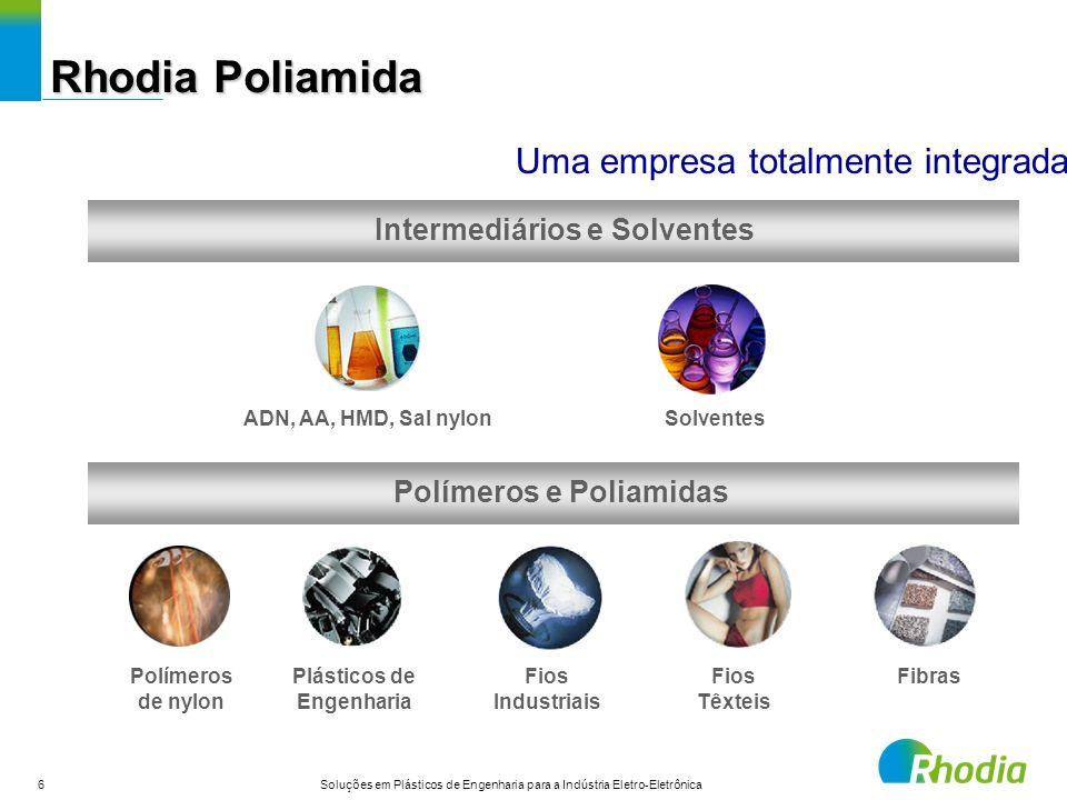 Intermediários e Solventes Polímeros e Poliamidas