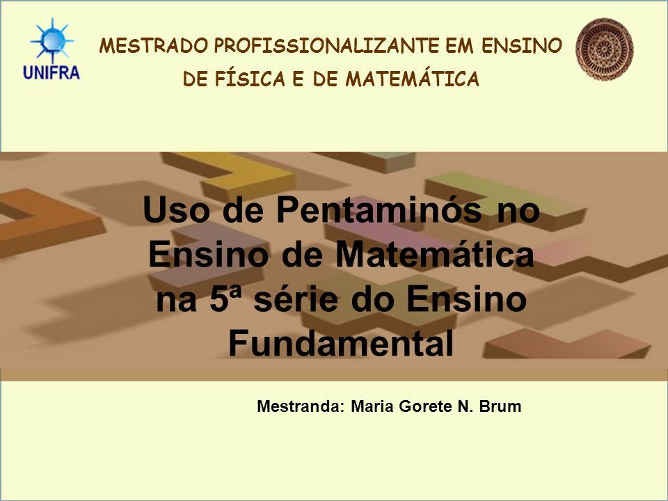 MESTRADO PROFISSIONALIZANTE EM ENSINO DE FÍSICA E DE MATEMÁTICA