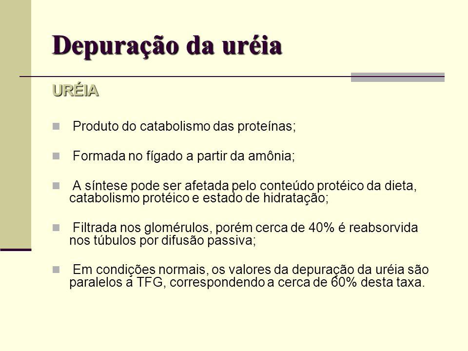Depuração da uréia URÉIA Produto do catabolismo das proteínas;