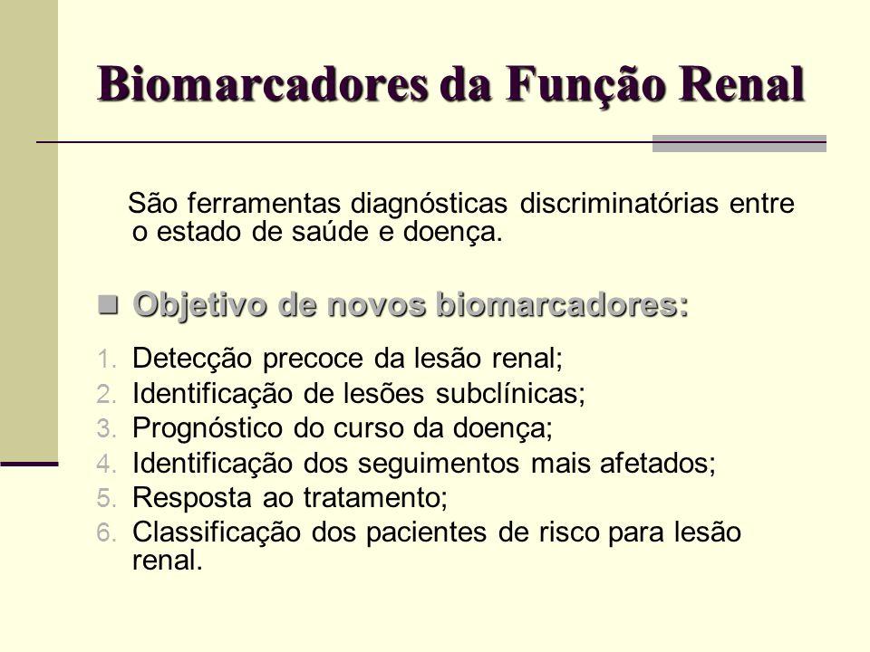 Biomarcadores da Função Renal