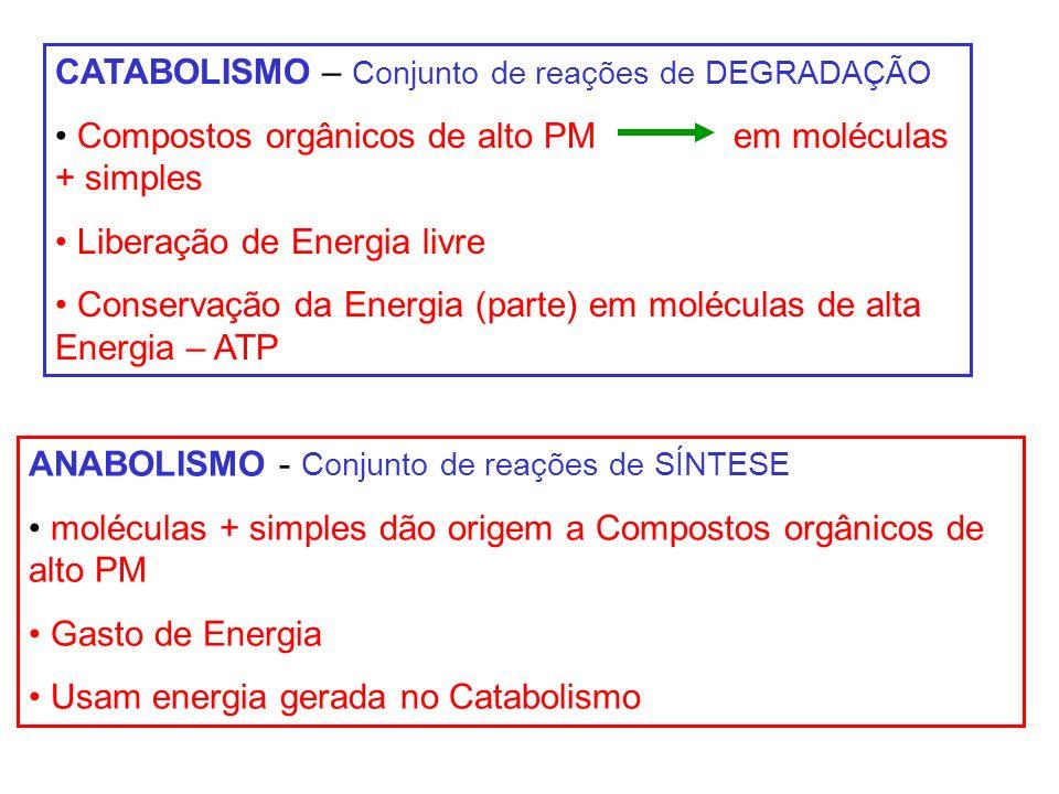CATABOLISMO – Conjunto de reações de DEGRADAÇÃO