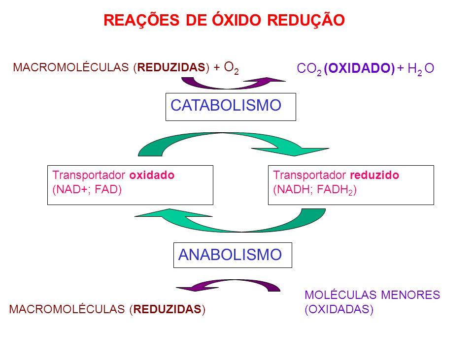 REAÇÕES DE ÓXIDO REDUÇÃO