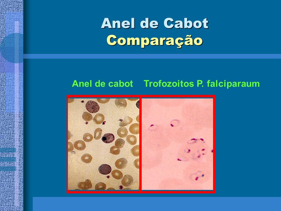 Anel de Cabot Comparação