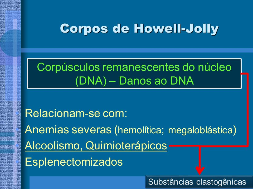 Corpos de Howell-Jolly