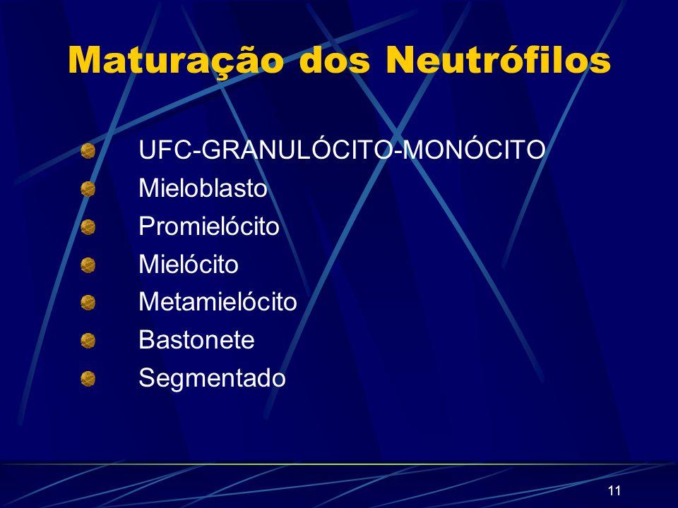 Maturação dos Neutrófilos